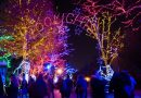 12 things to do in the D.C. area this weekend of November 29 to December 1