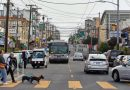 The Richmond District, San Francisco: An Old Favorite Still Beckons