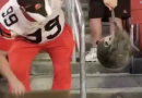 Browns Win The Game But Possum Steals The Show