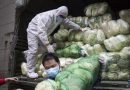 China logs most deaths in a day as total surpasses 1,000