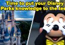 Disney Parks Trivia Quiz That's Pretty Hard