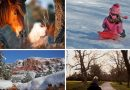 Escape From the City: 9 Winter Outings That Fight Cabin Fever